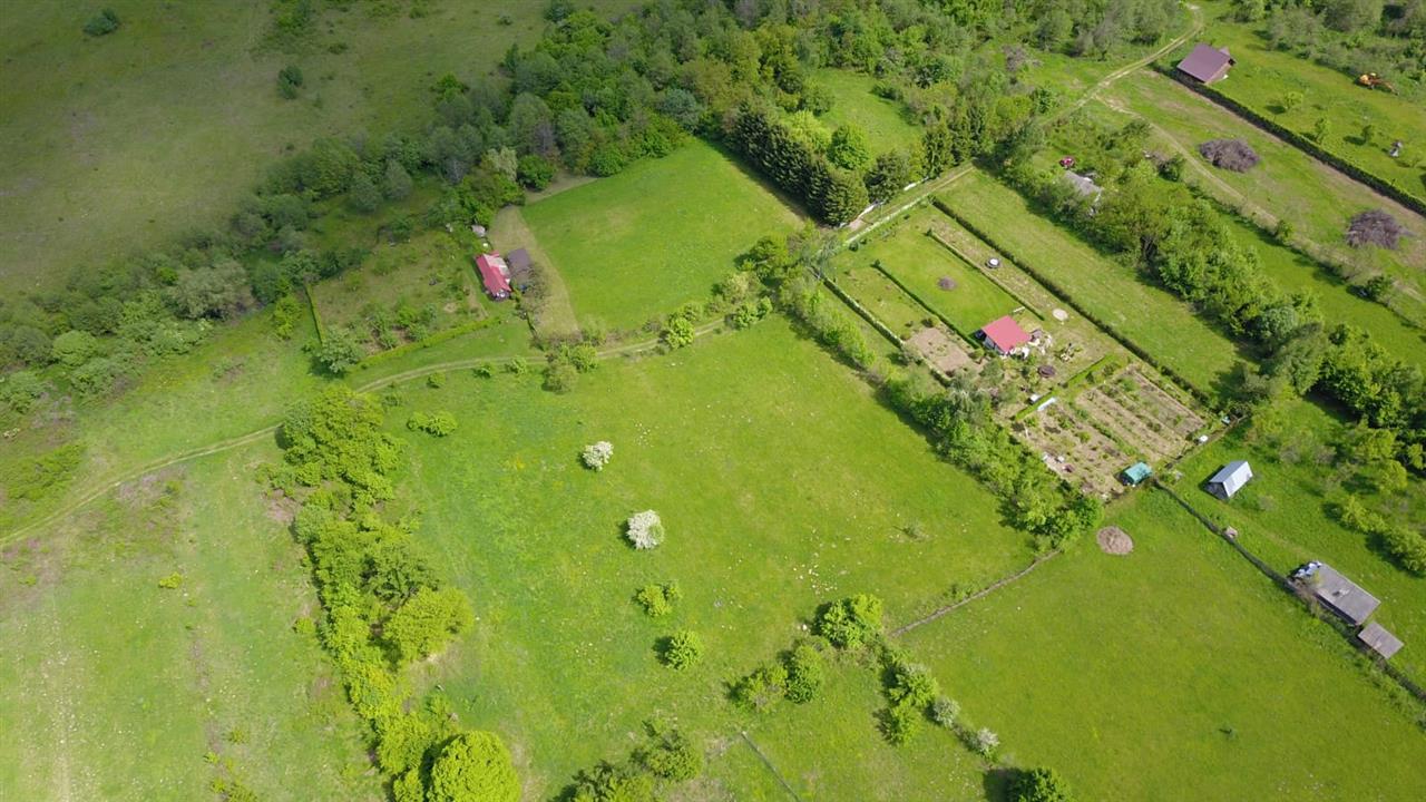 Teren 3600 mp de vanzare pe Valea Avrigului