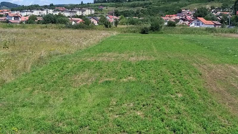 Teren de vanzare in Gusterita, Sibiu