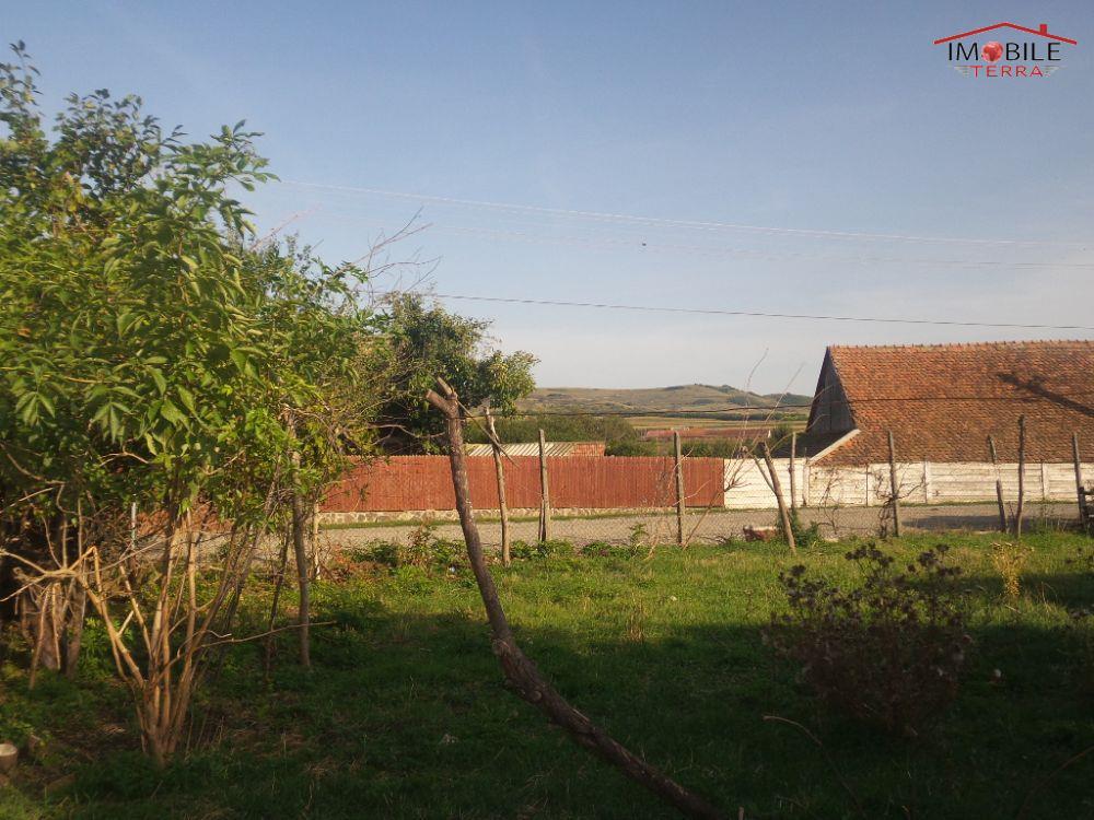 Casa de vanzare in armeni cu 4000mp teren - Terenes casa rural ...