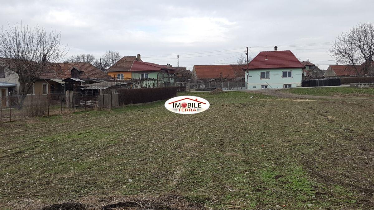 Teren de vanzare in avrig imobile private 8022 - Terenes casa rural ...