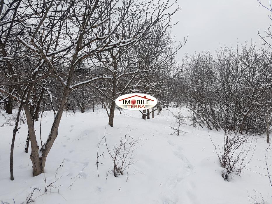 Teren de vanzare in Cisnadioara  Michelsberg