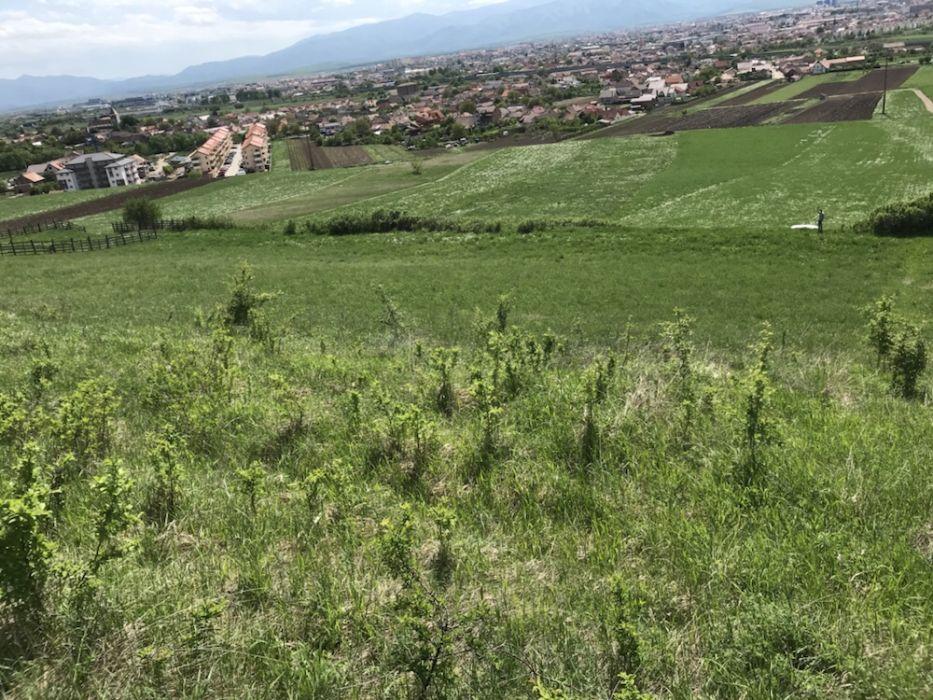 Teren de vanzare in Gusterita