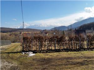 Teren cu utilitati la Tocile Sibiu