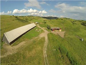 Vand 36 ha, teren agricol in Ocna Sibiului